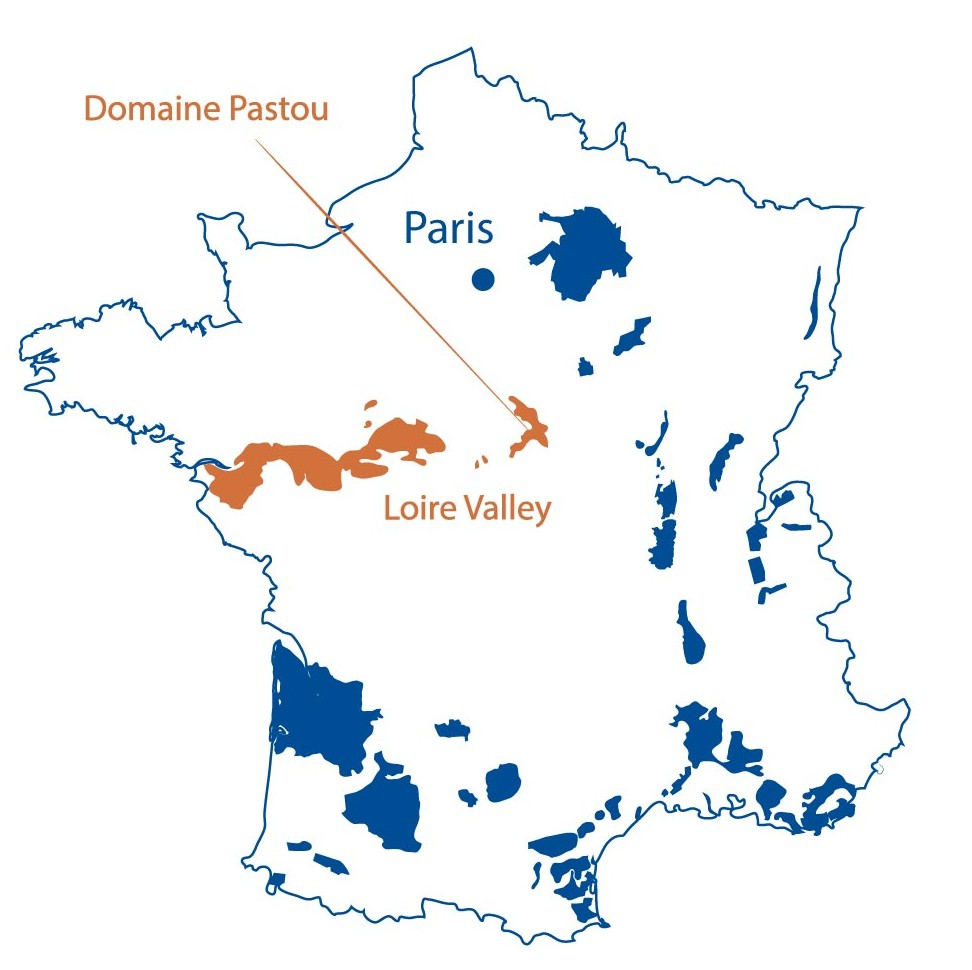 Domaine Pastou Sury en Vaux Loire Valley North Berkeley Imports