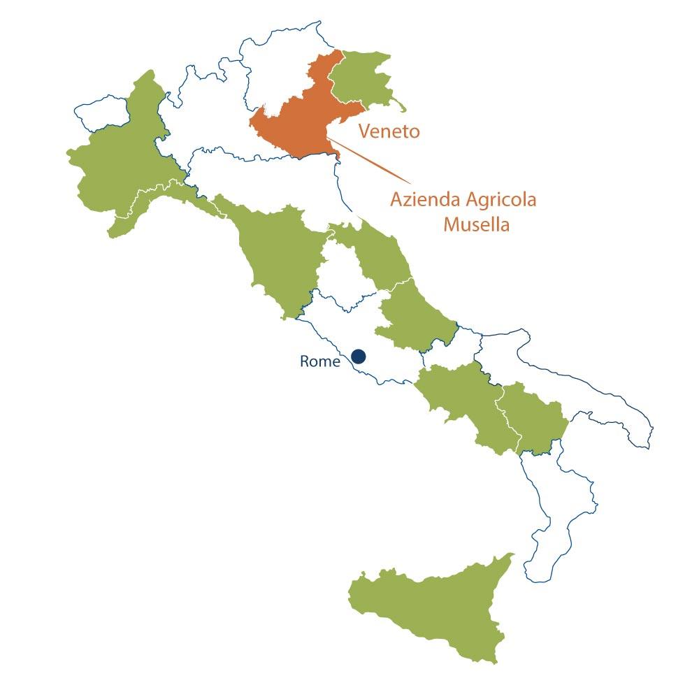Azienda Agricola Musella Veneto North Berkeley Imports
