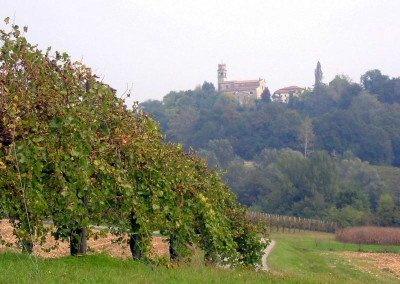 Azienda Agricola Ca'Vittoria