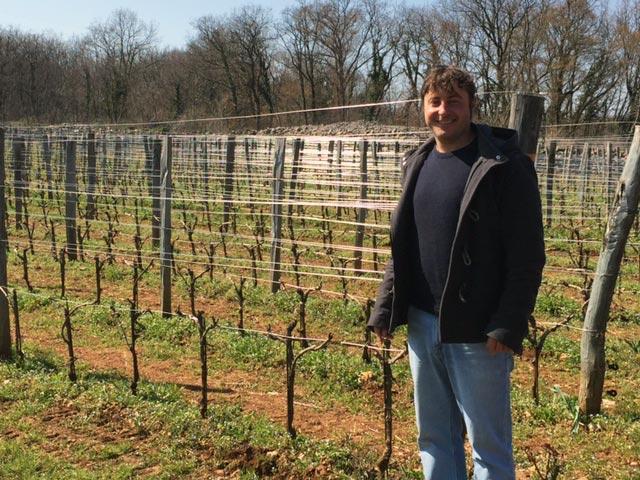 Skerlj Tops Friuli Whites in Wine & Spirits