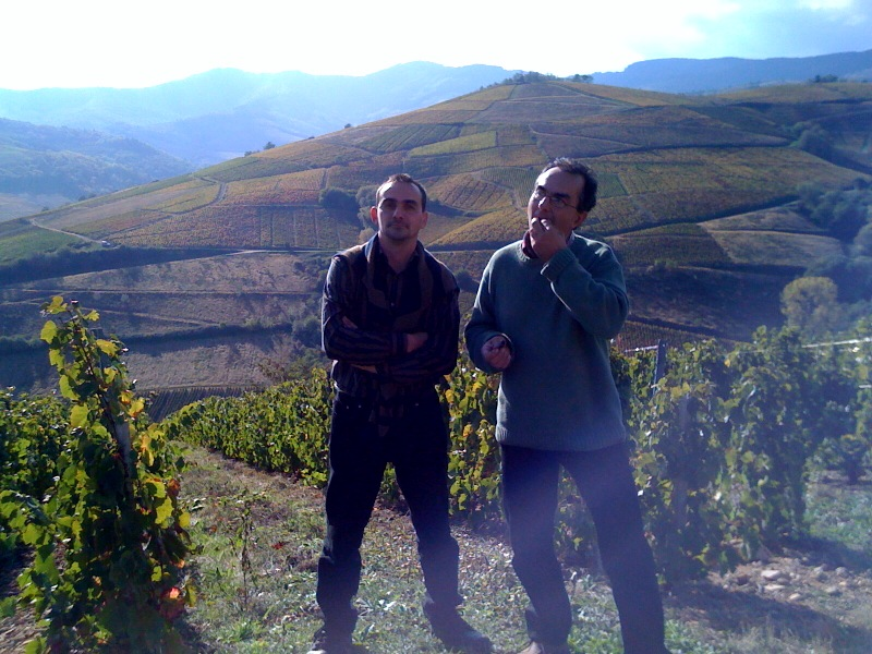 Madone Beaujolais-Villages in Wine Advocate