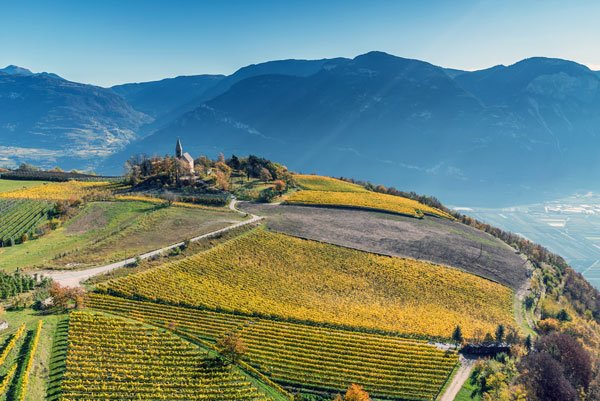 Alto Adige's Kurtatsch at Great Wines of Italy Beverly Hills